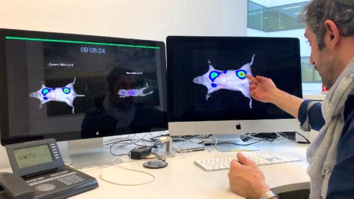 Photo of Türk hekim, kansere karşı 'en ayrıntılı görüntüleme' teknolojisini geliştirdi