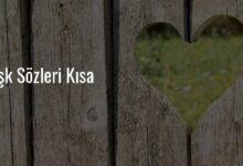Photo of En güzel aşk sözleri – kısa aşk sözleri 2020 – Sevda