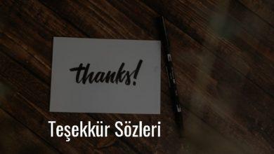 Photo of Teşekkür Sözleri Kısa – Teşekkür ile ilgili güzel sözler