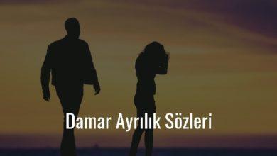 Photo of Damar Ayrılık Sözleri Kısa