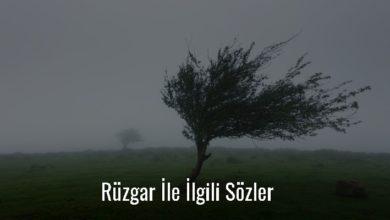 Photo of Rüzgar İle İlgili Sözler Kısa – Güzel Rüzgar Sözleri