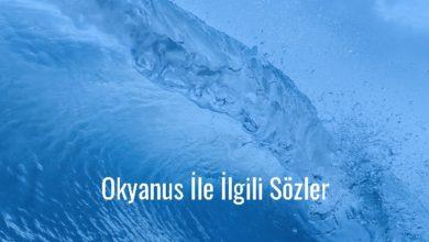 Photo of Okyanus İle İlgili Sözler Kısa – Güzel Okyanus Sözleri