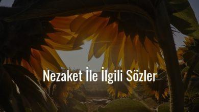Photo of Nezaket İle İlgili Sözler Kısa – Güzel Nezaket Sözleri