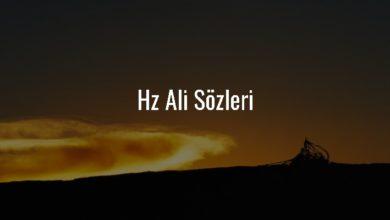 Photo of Hz Ali Sözleri – Hazreti Ali Sözleri