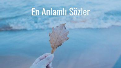 Photo of En Anlamlı Sözler